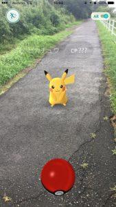 Pokémon GO のピカチュウ